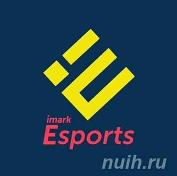 Imark Esports самое крупное киберспортивное медиа-агентство ..., МОСКВА