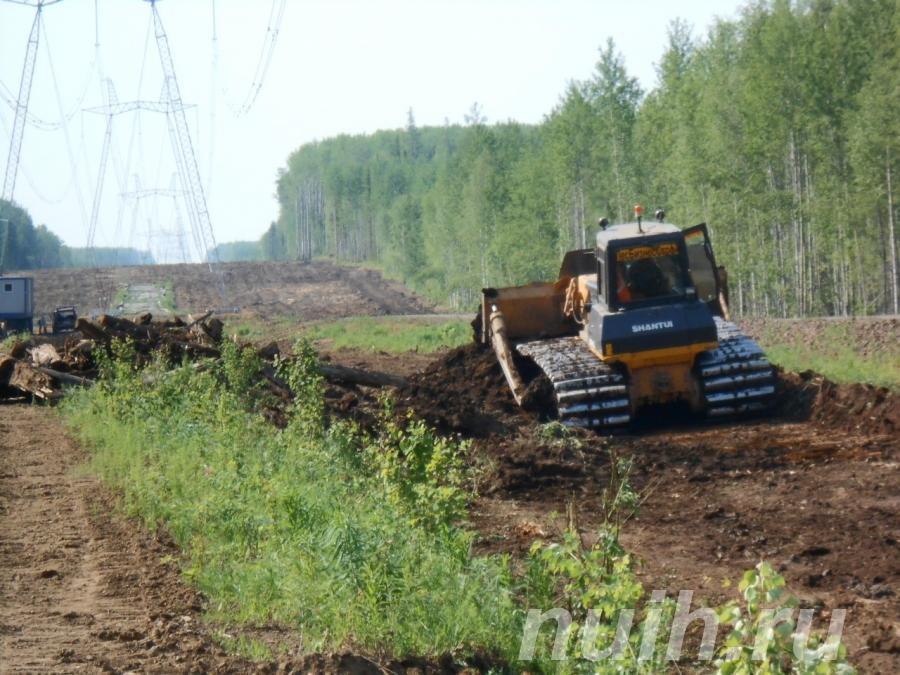 Расчистка территорий под строительство, МОСКВА