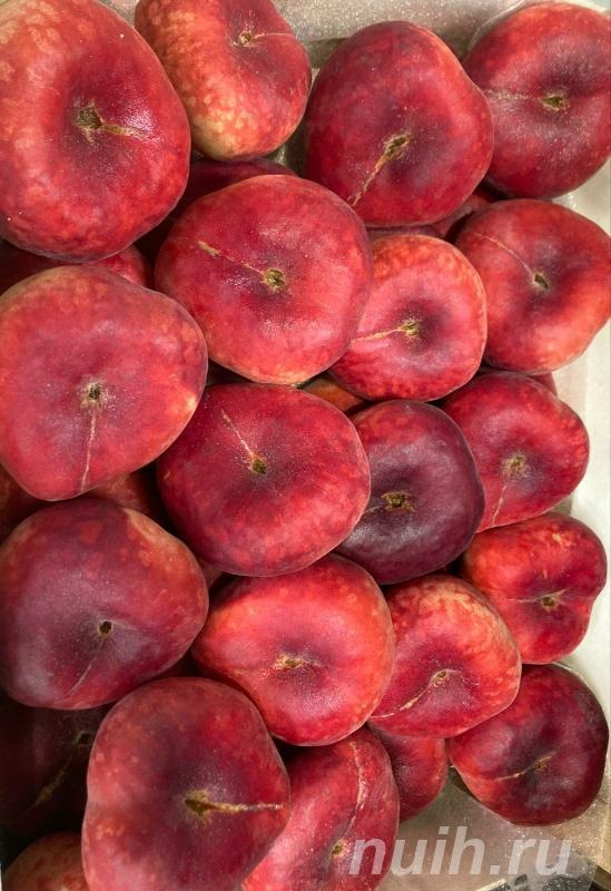 Экзотические фрукты и овощи экспорт,