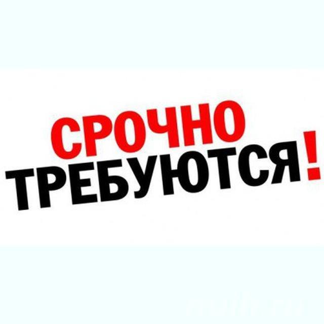 Администратор в онлайн-проект ЭКСПРЕСС-КАРЬЕРА,