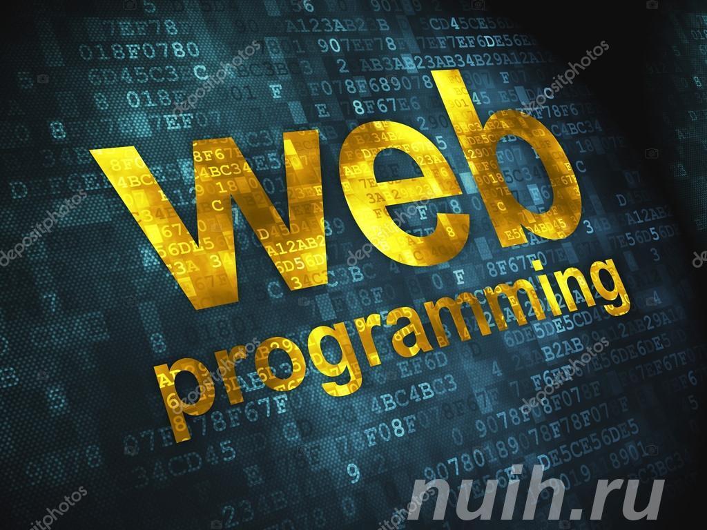 Курс Web-программирование, web-дизайн в центре Союз,  Тула